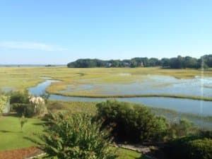 Hilton Head Plantation marsh view